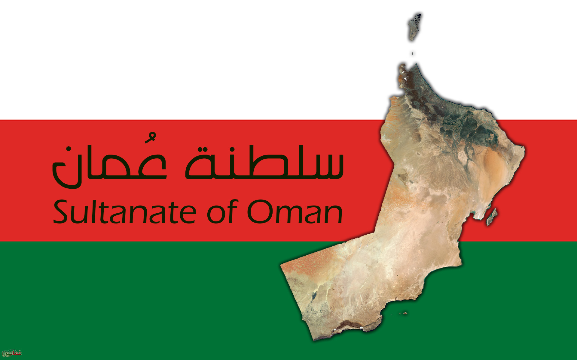 مطلوب مدرسين ومدرسات كافة التخصصات لمدارس كبرى بسلطانة عمان