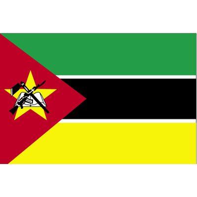مطلوب للعمل في دولة موزامبيق برواتب مغرية جدا