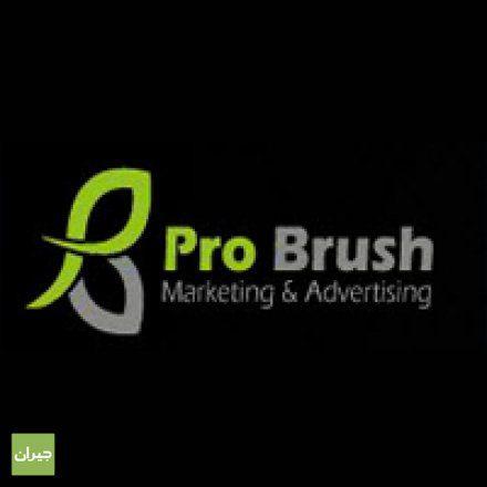 مطلوب مصممات عدد 5 للعمل في شركة برو برش لتقنيات الطباعة الحديثة