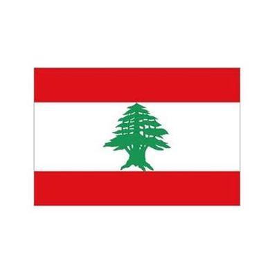 وظائف شاغرة للعمل في بيروت – لبنان لمدة قصيرة