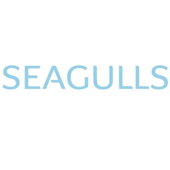 مطلوب محاسبين للعمل لدى شركة Seagulls – Jordan