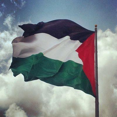 وظائف شاغرة للعمل في دولة  فلسطين