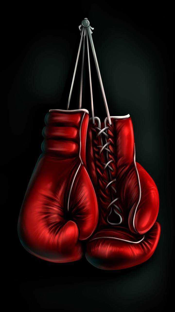 مطلوب لدى نادي رياضي للتوظيف مدربي ملاكمة
